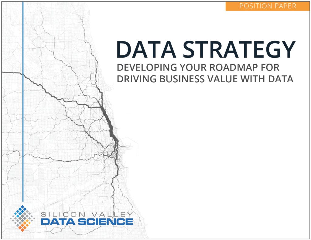 Data Strategy Position Paper